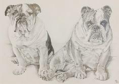 Kutya portré, ceruza rajz, fotó, A/2 Lion Sculpture, Statue, Studio, Dogs, Animals, Art, Art Background, Animales, Animaux