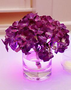 WeddingChannel Galleries: Purple Centerpieces