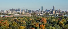 Harvard Stadium, from Mount Auburn Cemetery - Cambridge