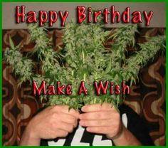 Happy birthday, fellow cannabis lover!