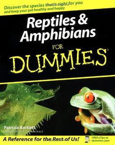 Reptiles and Amphibians For Dummies: Fanatical about frogs? Gaga over geckos? This essential guide tells you what you must know before you own a reptile or amphibian, with authoritative advice on everything from proper caging and feeding to health care, socializing, transporting, and more. You'll find out about the different species, normal and abnormal behavior, the basics of breeding, and complying with laws.