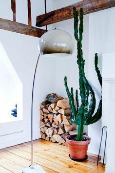 hotel interior design and decor House of Reticence / FORM cactus Modern Home Design casapraiatabating. Indoor Cactus Garden, Cactus House Plants, Indoor Plants, Cactus Lamp, Cactus Cactus, Cactus Decor, Plant Decor, Grand Cactus, Tall Cactus