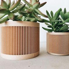 Bring a touch of originality and modernity to your pots of plants or cacti with this Pot / Planter Design, geometric & minimalist, printed in 3D in Wood. No need to repot your plants or cacti, you can just put your pot directly inside! Its geometric lines, inspired by origami and its material will bring a modern, hygge, scandinavian and original side to your interior, but also makes an original gift to offer to your loved ones! This pot is made from an innovative and environmenta...