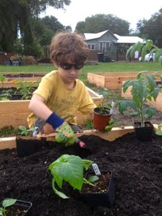 How Community Gardens Can Help Kids Go Global