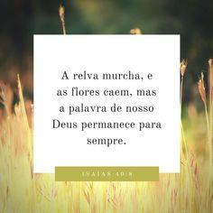 A relva murcha, e as flores caem, mas a palavra de nosso Deus permanece para sempre. Isaías 40:8. #God #Jesus #bible #bíblia #versículos