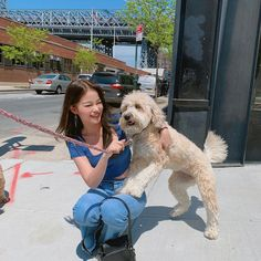 Image may contain: dog and outdoor Ulzzang Korean Girl, Cute Korean Girl, Photography Poses, Korean Fashion, 21st, Pretty, Dogs, Pictures, Animals