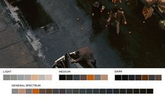 The Godfather – Color Palette