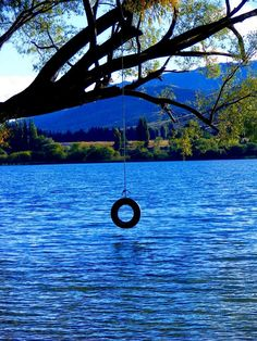 Summer at the lake... what childhood memories are made of.