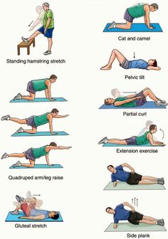 23 best stretches and exercises for lower back pain images