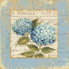 Blue hydrangea postale (postcard) on writing with blue background.