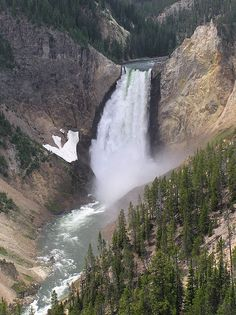 Yellowstone Falls and the Grand Canyon of Wyoming, Yellowstone National park which also extends into Idaho and Montana. Yellowstone Nationalpark, Yellowstone Park, Visit Yellowstone, Great Places, Places To See, Beautiful Places, Beautiful Park, Beautiful Sites, Wonderful Places