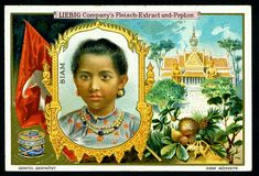 1900.  Asian Beauties (Siam) trading card issued by Liebig Extract of Beef Company. S622.