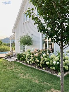 Hortensien-Pracht im Garten Hortensien-Pracht im Garten Image by D But don't forget that with Houzz your first stop can Beryllium. Garden Cottage, Home And Garden, Hydrangea Garden, Hydrangea Landscaping, Hydrangeas, Cottage Exterior, Front Yard Landscaping, Dream Garden, Garden Inspiration