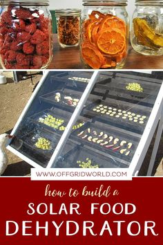 Making your own solar food dehydrator is an inexpensive way to save your garden produce for year-round use. Drying has many advantages over other preservation methods. First, dried foods are easier to store than fresh or canned foods because they take up a fraction of the space and require no refrigerator or freezer. #dehydratingfood #fooddehydrator #solarfooddehydrator #dryingfood #sundried Planting, Gardening, How To Eat Less, How To Make, Canned Foods, Dehydrator Recipes, Diy Solar, Sun Dried, Sustainable Living