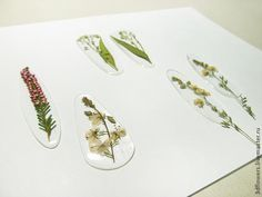MK epoxy resin and dried flowers - the creation of transparent jewelry without Molde - Fair Masters - handmade, handmade