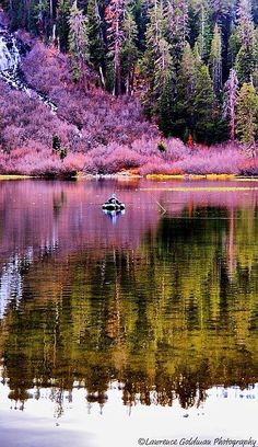 ~Bass Fisherman, Mammoth Lakes, California | PicsVisit~  Go fishing to have fun and enjoy the beautiful scenery