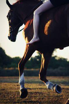 bareback gallop