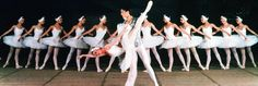 "Moscow Festival Ballet, ""Swan Lake"""