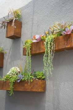 Stunning Vertical Garden for Wall Decor Ideas Do you have a blank wall? the best way to that is to create a vertical garden wall inside your home. A vertical garden wall, also called… Continue Reading → Garden Wall Designs, Vertical Garden Design, Beautiful Home Gardens, House Beautiful, Walled Garden, Succulents Garden, Succulent Wall Planter, Vertical Succulent Gardens, Succulent Garden Ideas
