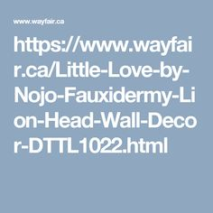 https://www.wayfair.ca/Little-Love-by-Nojo-Fauxidermy-Lion-Head-Wall-Decor-DTTL1022.html