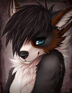 furry black dog