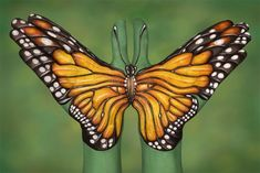 Guido+Hand+Butterfly | Monarch Butterfly (Image courtesy Guido Daniele)