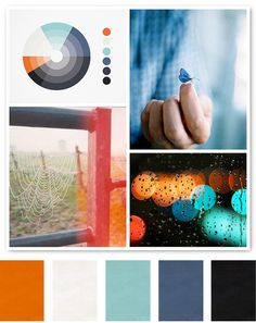 beautiful color scheme from creature comforts