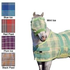miniature horse fly protection