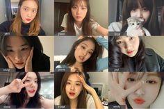 Wendy Red Velvet, Red Velvet Joy, Black Velvet, I Dont Have Friends, Boy And Girl Best Friends, Blackpink And Bts, Black Pink Kpop, Sooyoung, Girl Gang
