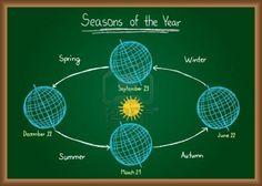Illustration of seasons of the year drawn on chalkboard Stock Photo - 16561809
