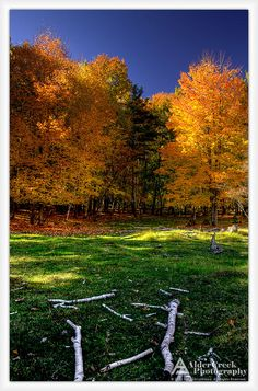 Marinette County, Wi