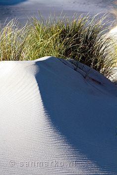 Sanddunes on the island of Terschelling Holland.