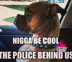 Be cool bro