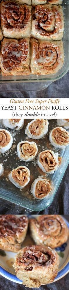 Gluten Free Cinnamon Rolls--yeasty and fluffy these babies double in size!