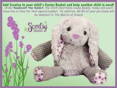Your purchase of Roosevelt the Rabbit will support the March of Dimes imbornto campaign, allowing it to continue its research and education programs to prevent premature births, birth defects and infant mortality and to bring comfort to families when they need it most. Scentsy will donate $6.50 from the sale of each Roosevelt to the March of Dimes. The March of Dimes does not endorse specific products or brands. Scentsy has committed to a minimum donation of $150,000.