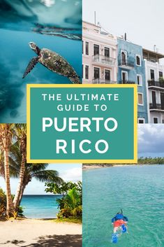 This is the Ultimate Guide to Puerto Rico. Learn about the island and enjoy incredible adventures like snorkeling swimming zip lining hiking and more! babies flight hotel restaurant destinations ideas tips Places To Travel, Travel Destinations, Places To Visit, El Yunque National Forest, Travel Usa, Japan Travel, Bolivia Travel, Colombia Travel, Brazil Travel