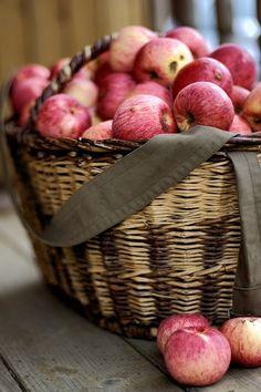 harvest baskets - charmingspaces: