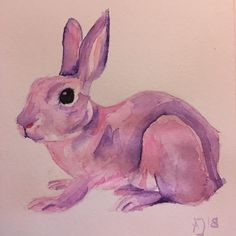 Aquarell malen lernen - Hase in pink - Anja Jaeger Drawing Sketches, Drawings, Pink Rabbit, Royal Brides, Watercolor Pencils, Learn To Paint, Illustration Art, Workshop, Black And White