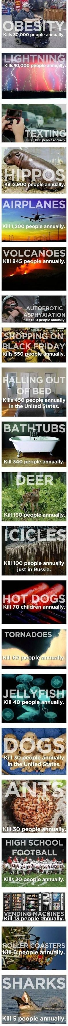 Statistics on death. Crazy! Had to share cause of the deer part haha
