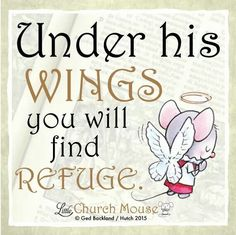✬✬✬ Under his Wings you will find Refuge. Amen...Little Church Mouse 24 Dec. 2015 ✬✬✬