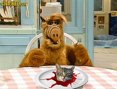 20 Rejected Scenes from Classic TV Shows Slideshow | Cracked.com