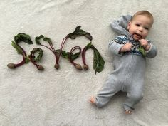Pin for Later: These Monthly Baby Veggie Portraits Are Cute Enough to Eat Beets Baby Next, Monthly Baby Photos, Photo Series, Summer Baby, New Parents, Baby Month By Month, Baby Pictures, Onesies, Infant
