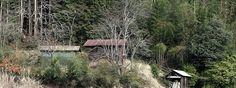 Yesterdays ride through the Ujitawara backcountry.https://www.youtube.com/watch?v=_X_csVWLL3s