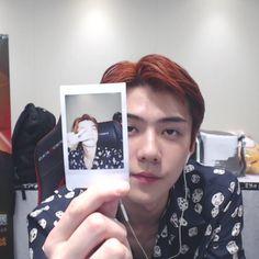 omg those poloroid is so cutee 😭🔫 . Sehun Cute, Chansoo, Xiu Min, Exo Memes, Exo K, Kyungsoo, Boyfriend Material, Seokjin, Cute Babies
