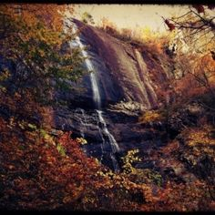 Locals Know Best., Do.   Chimney Rock State Park Asheville-Downtown...