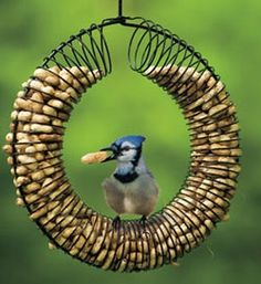 Bird feeder from a slinky and a hanger
