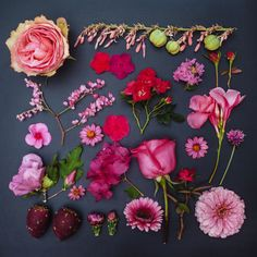 Pink Garden Collection by Emily Blincoe l #photography #styling