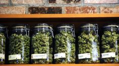 Ohio increases planned medical marijuana shops by 33 percent...