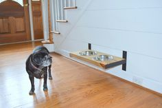 Wall Mount Dog Feeder, Dog Furniture, Raise Dog Feeder, Industrial Chic, Dog Bowl Stand, Dog Feeding, Elevated Dog Bowl, Pet Furniture by CleverRavenDogCo on Etsy https://www.etsy.com/listing/526201562/wall-mount-dog-feeder-dog-furniture