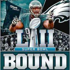 Nfc East Champions, Superbowl Champions, Nfl Superbowl, Eagles Win, Fly Eagles Fly, Eagles Philly, Philadelphia Eagles Super Bowl, Philadelphia Sports, Super Bowl L